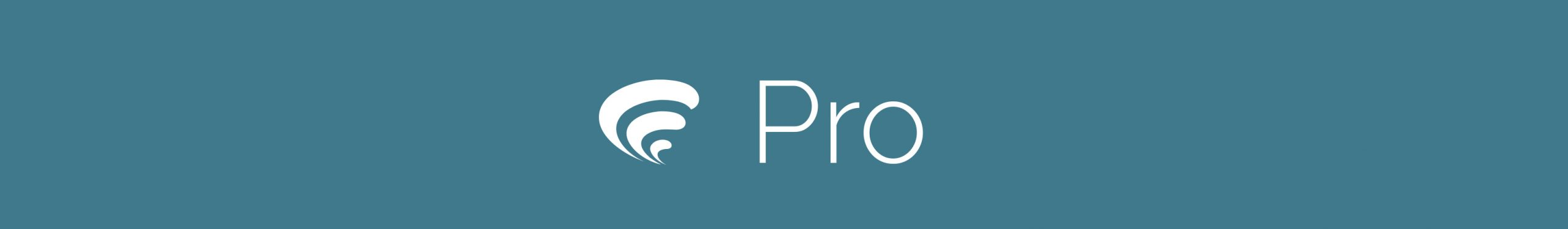 Produktbilde for Pindena Pro lisens